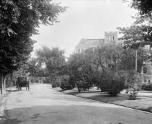 Driveway near Collegiate Institute ca 1911
